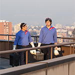 roof building staff maintenance