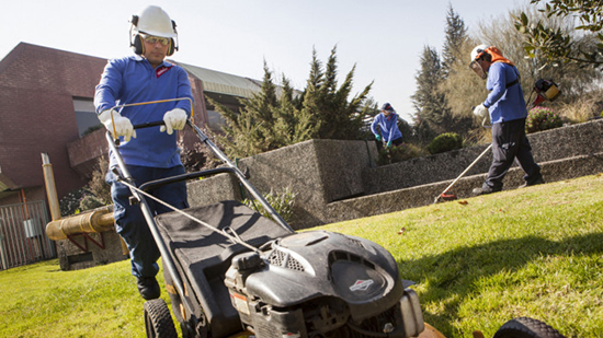 Sodexo Grounds Maintenance staff mowing a lawn and cutting hedges wearing protective clothing